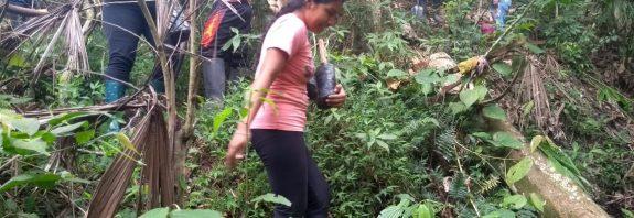 Reforestacion la playita corinto